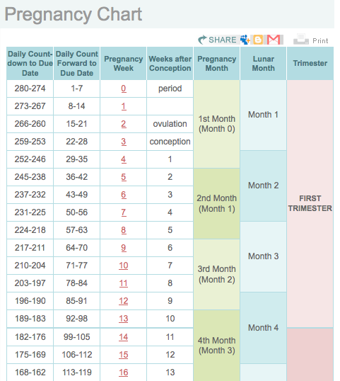 search results for pregnancy month by month calendar page